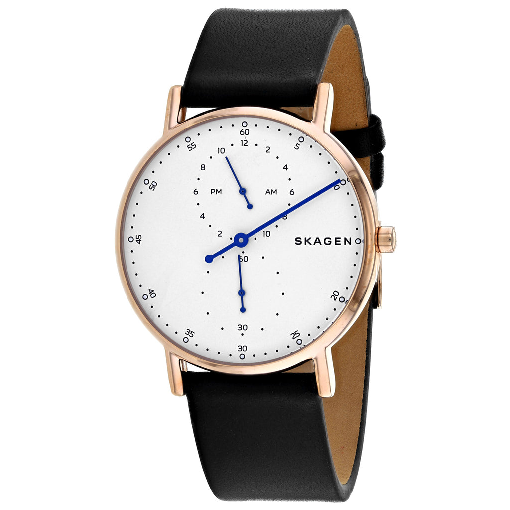 Skagen Men's Signatur Watch (SKW6390)