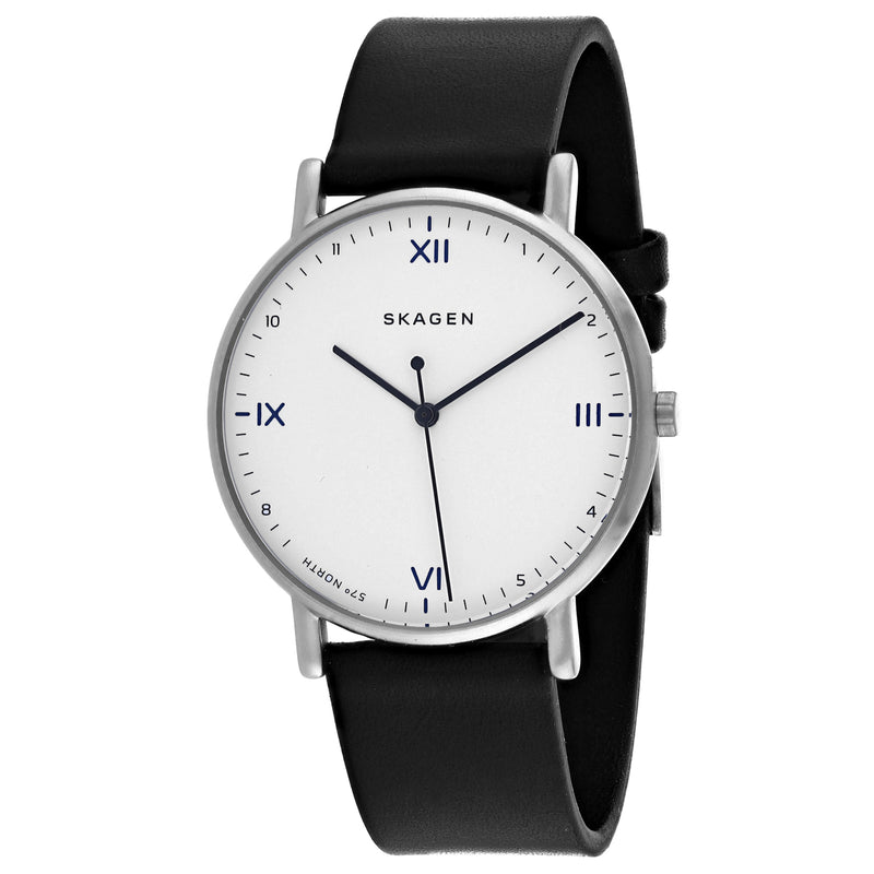 Skagen Men's Classic Watch (SKW6412)