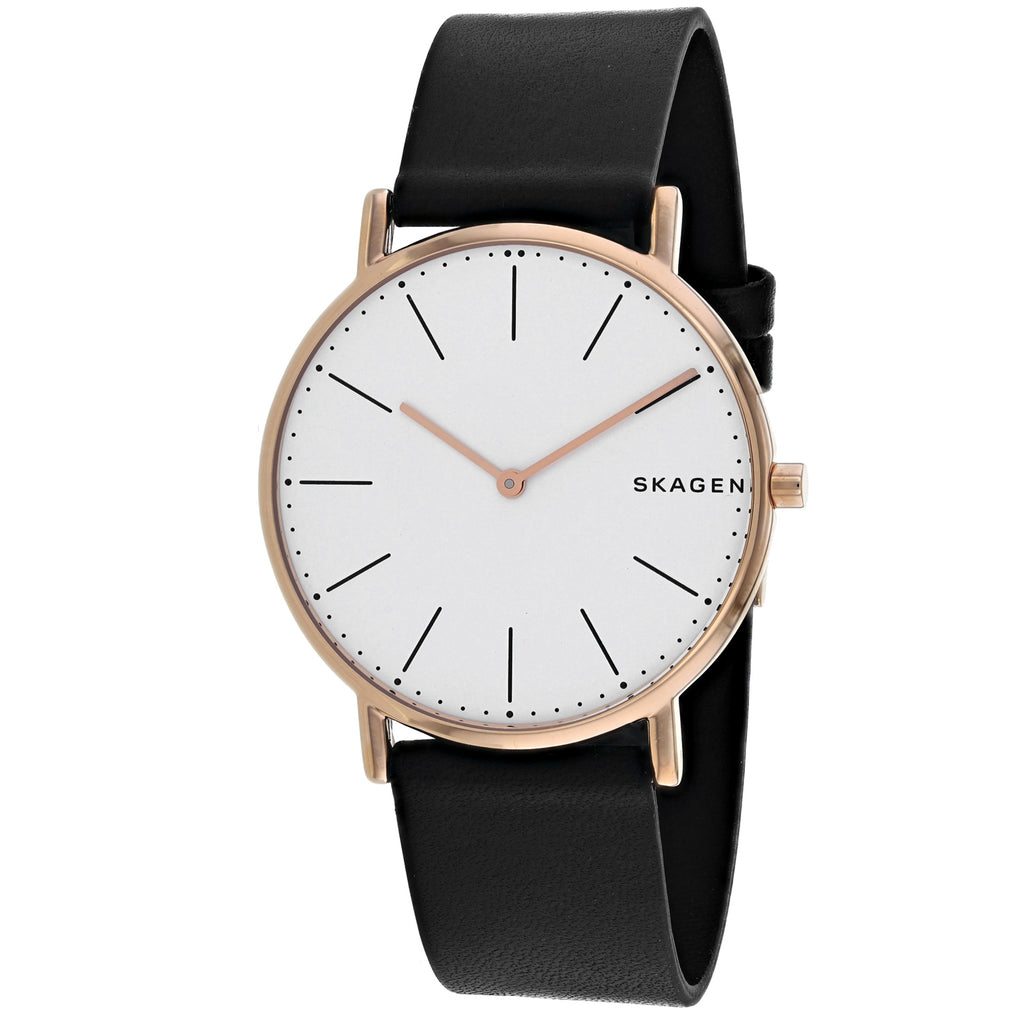 Skagen Men's Signatur Watch (SKW6430)
