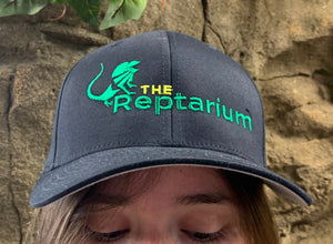 REPTARIUM HAT FLEX FIT - BLACK