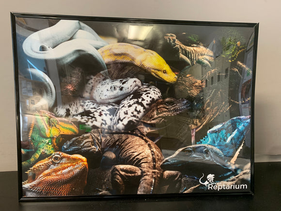 The Reptarium Mural Poster