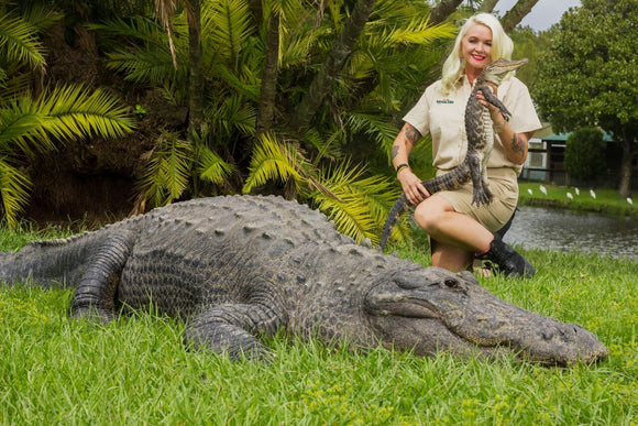 SPEND THE NIGHT WITH ALLIGATORS - The Reptarium