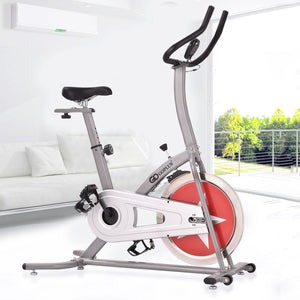 Adjustable Gym Fitness Cardio Exercise Bike