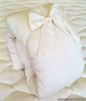 Holy Lamb Organics Envelope Style Slip Case Buddy Pillow Size - NutritionalInstitute.com