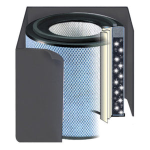 Austin Air Replacement Filter HealthMate Junior Plus For Gas Removal ,Black