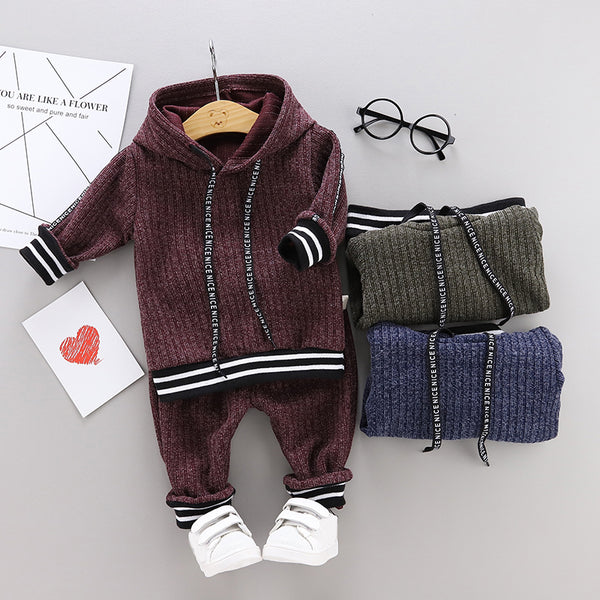 Boys Sleek Long Sleeves Hoodie Tops and Pants Sets