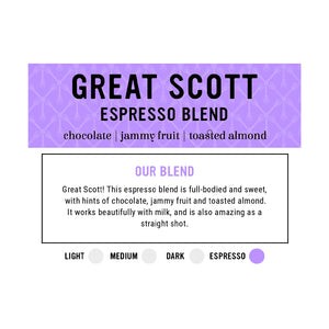I.XXI Whole Bean Espresso, 3 Pack Gift Box