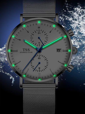Quartz Chronograph Luminous Mesh Band T5021061