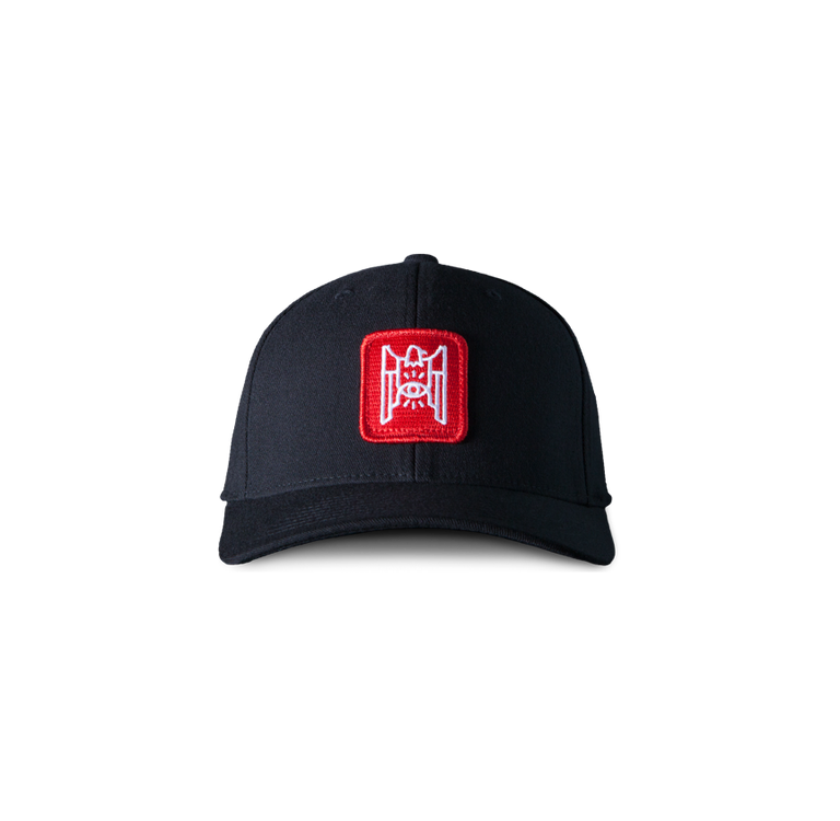 Dad Hat - Parliament