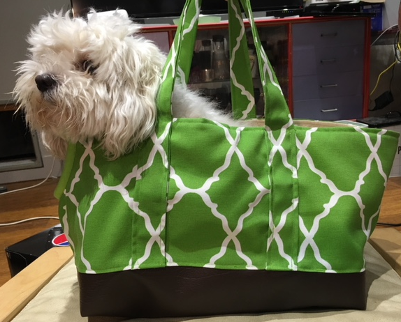 Dog Carry Bag - Yum Dog Treats Online
