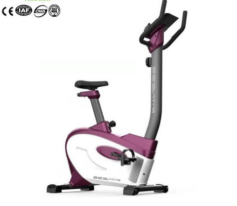 Smart Fitness Spin Bicycle