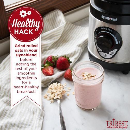 The Perfect Home Blender-High Power-Stainless Steel Scoop