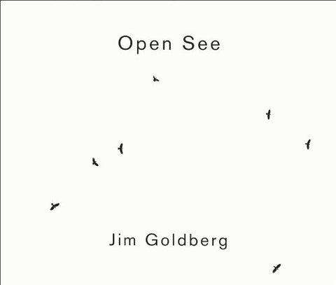 Jim Goldberg: Open See by Jim Goldberg (10-Aug-2009) Paperback