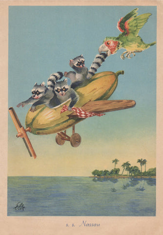 SS Nassau 1952 Raccoon Menu Art