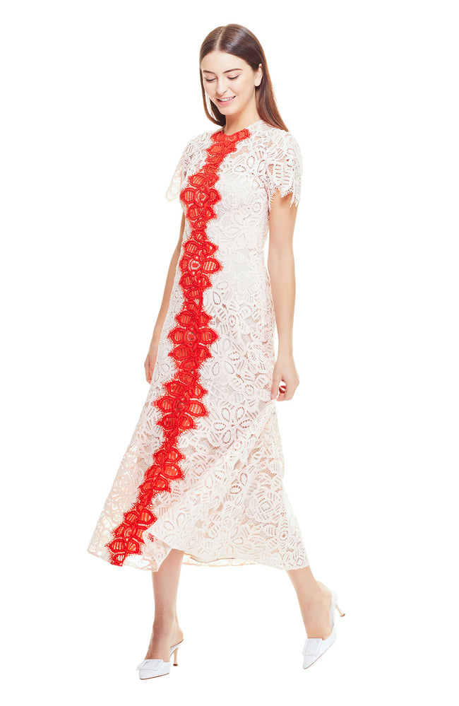 Floral Corded Lace Flutter Sleeve Contrast Dress
