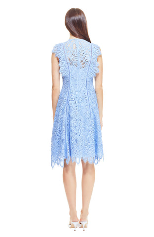 Floral Corded Lace Flutter Sleeve Seamed Dress