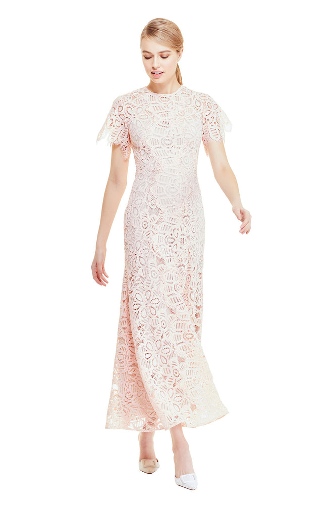 Floral Corded Lace Flutter Sleeve Dress