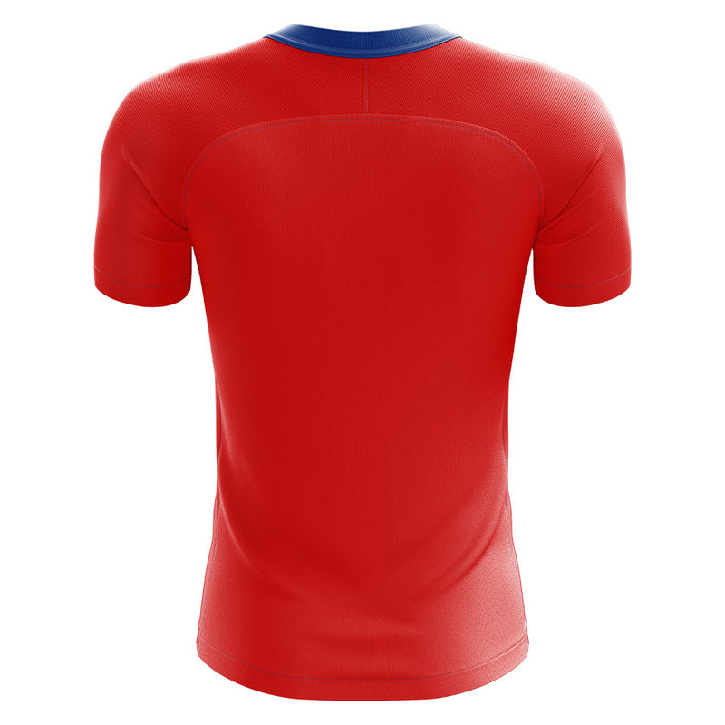 Czech Republic 2020-2021 Home Concept Football Kit (Airo) - Terrace Gear