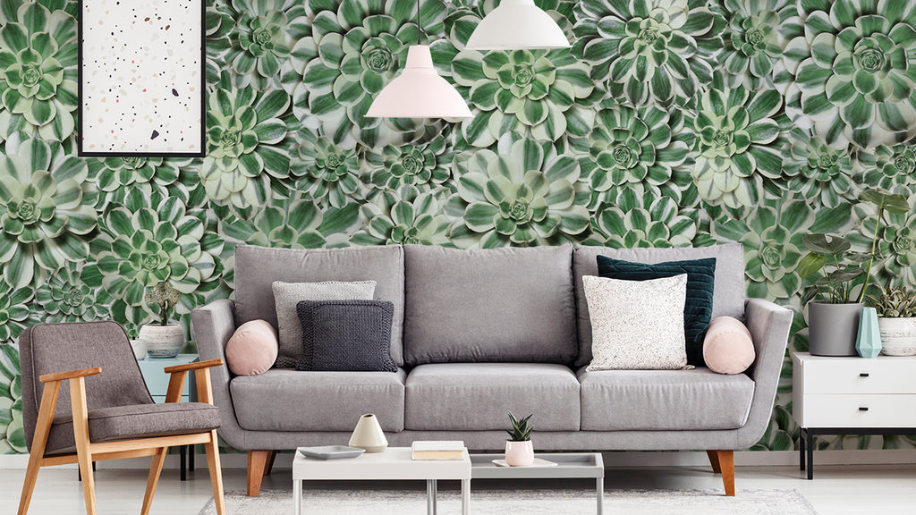 Succulent | Wallcovering | Zoom