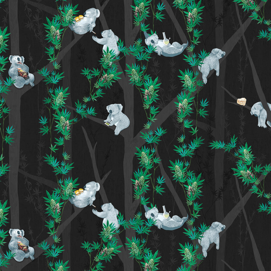 Kushy Koalas - Grass Wallpaper