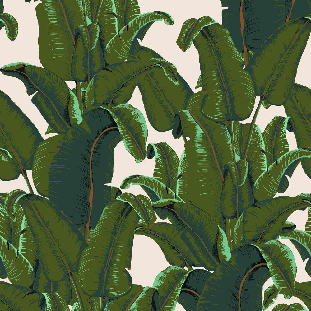 Banana Leaf - Burro Wallpaper