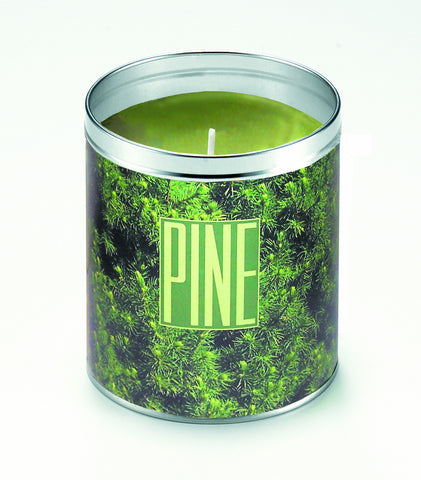 Panoramic Pine Candle