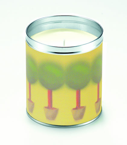 Potted Rosemary Candle