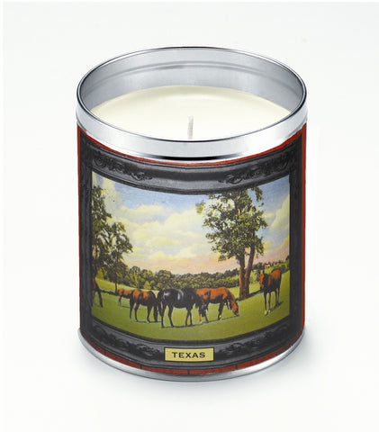 Horse Frame Candle