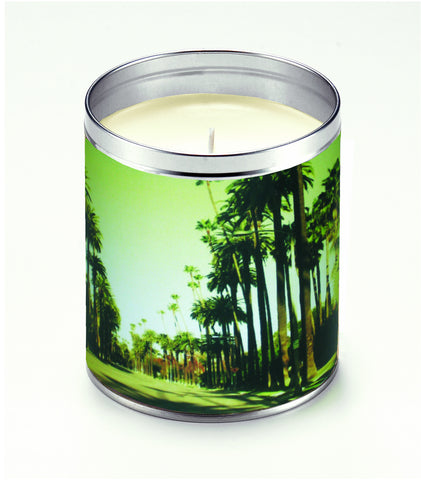 America The Beautiful Avenue of Palms Candle