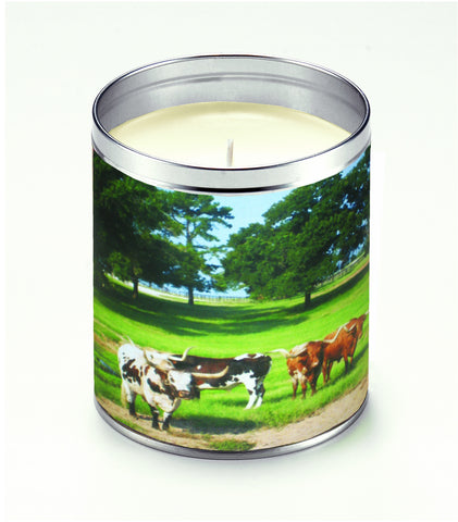 America The Beautiful Cattle Ranch Candle