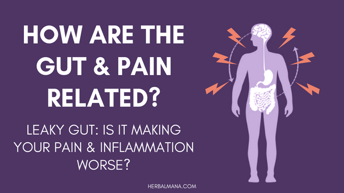 Is Leaky Gut Making Your Pain & Inflammation Worse?