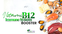 Does Vitamin B12 boost Immune System Function?