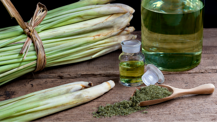 Lemongrass Essential Oil + DMSO Uses and Benefits