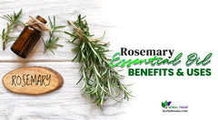 Rosemary Essential Oil Benefits & Uses (For Hair, Stress, and More!)