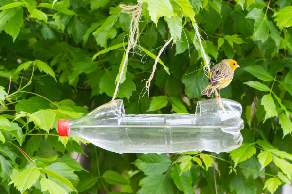 earth day reusing plastic bottles diy crafts with a plastic bottle upcycle it plastic bottle turned into a bird feeder waterer hanging in tree close up with yellow and brown bird perched to drink