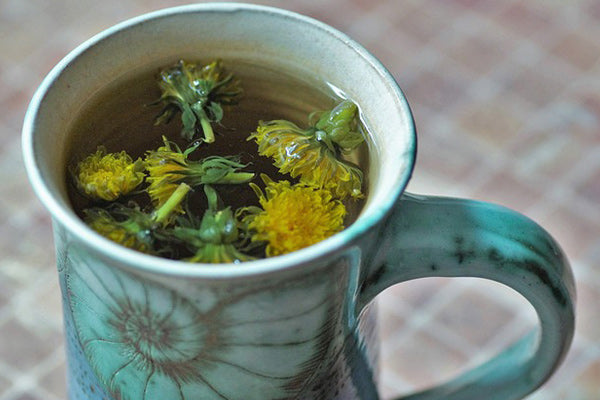 the benefits of dandelion uses for dandelion dandelion tea benefits dandelion flowers made into a tea in a fossil mug sitting on a table with plaid tablecloth