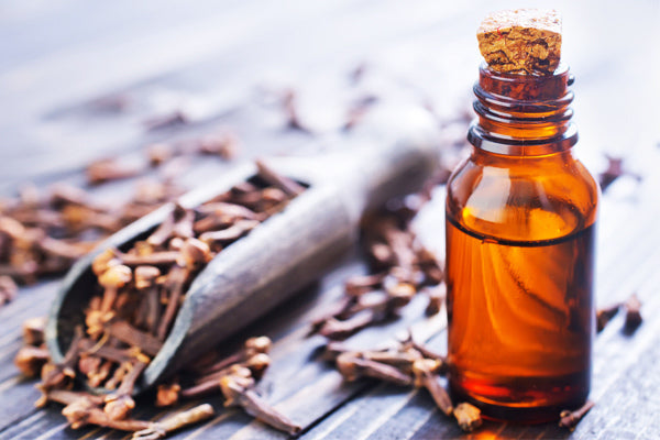 clove essential oil benefits and uses of clove oil clove essential oil in amber glass bottle with clove in a wooden scoop on wood table