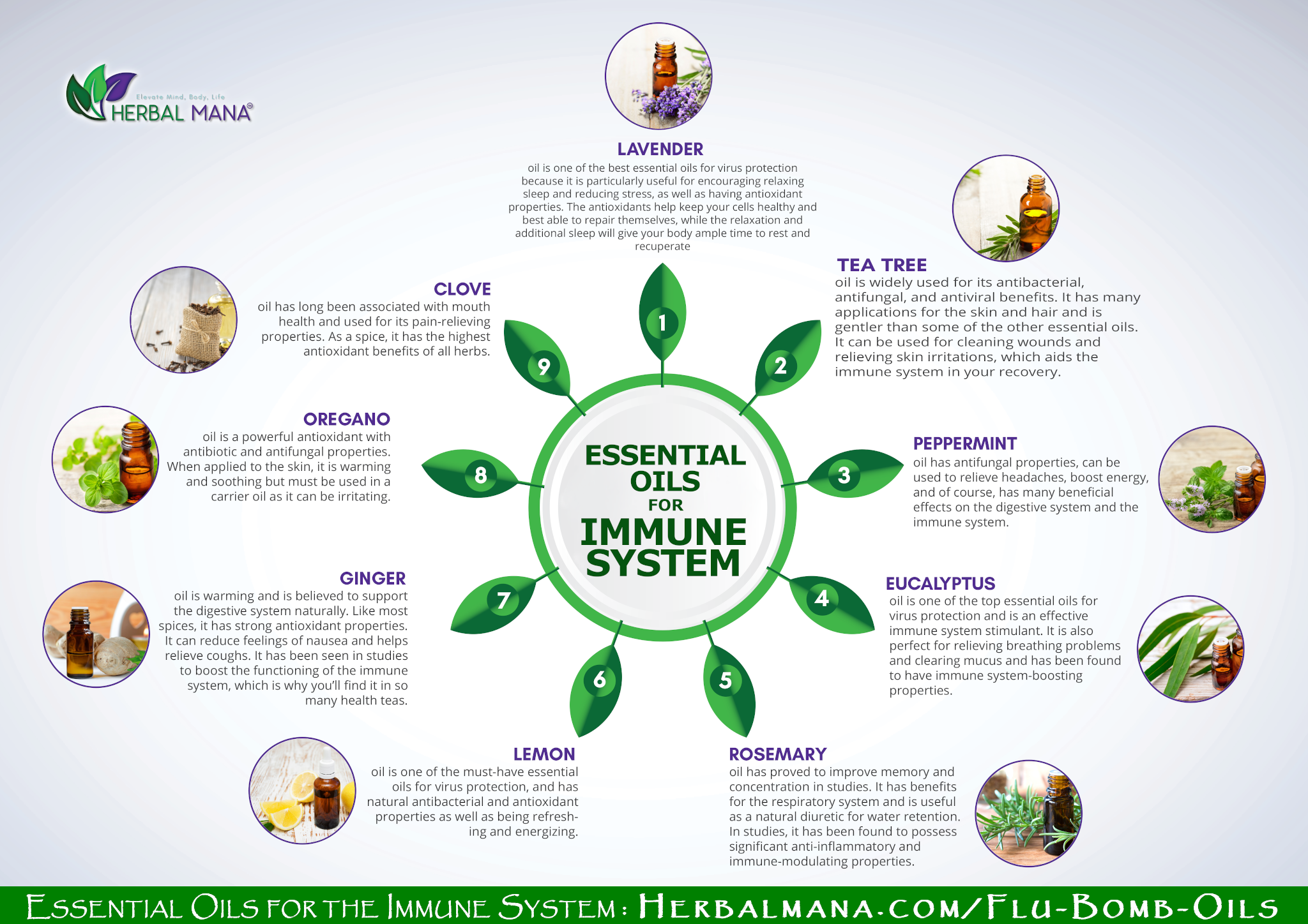 9 Essential Oils for Immune System Infographic