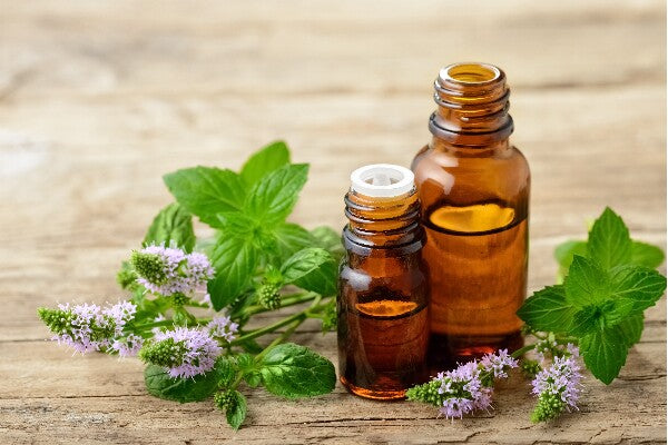 essential oils for nerve pain and neuropathy peppermint oil peppermint leaves