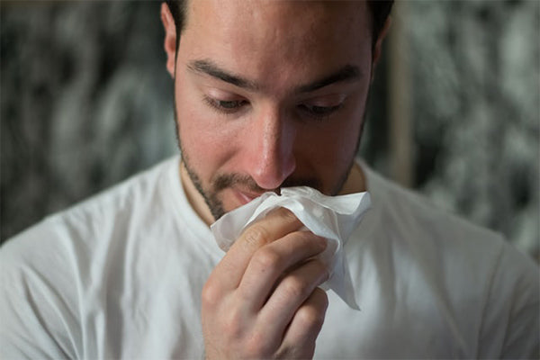 helichrysum essential oil benefits and uses man holding tissue up to his face with cold and cough wearing white t shirt blurred background