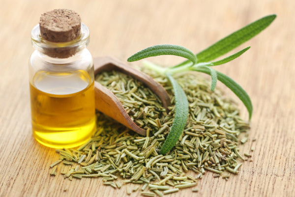 what essential oils are good for pain dried rosemary in wooden scoop on wood table with rosemary essential oil close up