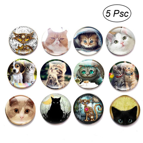 5pcs Glass Refrigerator Magnet