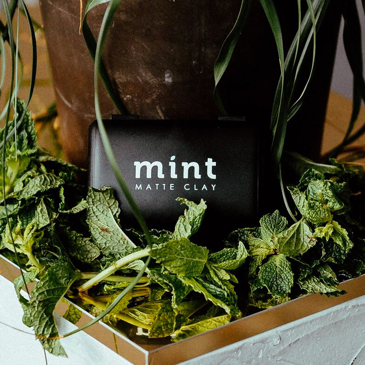 Mint Refresh Subscription