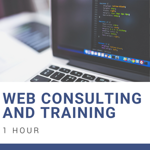 Web Consulting & Training [1 Hr]