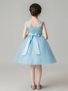 Sweet Applique Tulle Flower Girl Dresses Cg03396-Blue 2