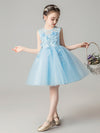 Sweet Applique Tulle Flower Girl Dresses Cg03396-Blue 3