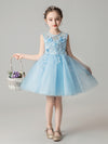 Sweet Applique Tulle Flower Girl Dresses Cg03396-Blue 1