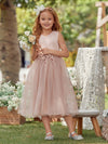 Fancy Wholesale A-Line Tulle Flower Girl Dress With Appliques-Blush 3