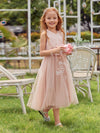 Fancy Wholesale A-Line Tulle Flower Girl Dress With Appliques-Blush 1
