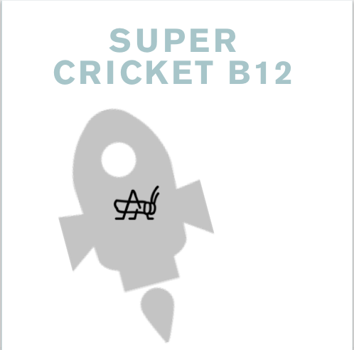 Why B12 From Crickets Is Better